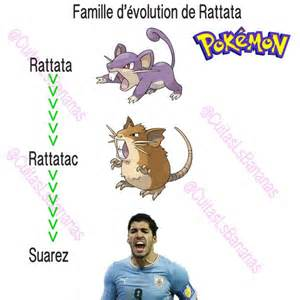 What Does Fun Stand For by Pokemon Rattata Evolution Images Pokemon Images