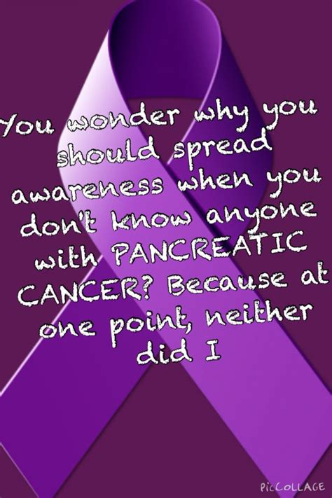 color for pancreatic cancer best 25 pancreatic cancer awareness ideas on