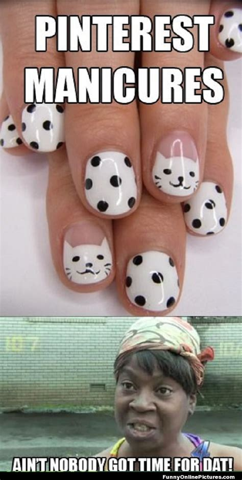 Pinterest Memes - funny animal memes pinterest nice pics