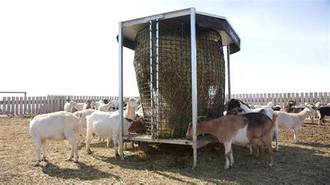 bale feeders for cattle hayboss livestock bale feeder