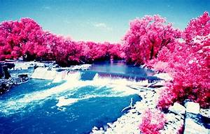 Nature Pink Trees Blue Sky Waterfall