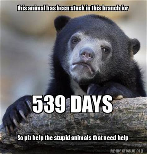Animal Meme Generator - meme creator this animal has been stuck in this branch for 539 days so plz help the stupid a