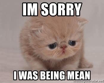 Im Sorry Memes - im sorry i was being mean super sad cat meme generator