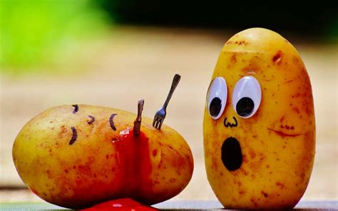 EF  Warum wir alle viel mehr Kohlenhydrate essen sollten