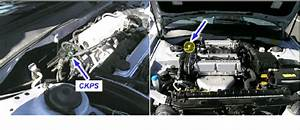 Does The Serpentine Belt Tensioner Have To Be Removed To