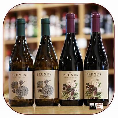 Prunus Portugal Branco Gota Tinto Winery Wine
