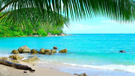 tropical island ambience sound thailand ocean sounds for relaxation and holiday feeling