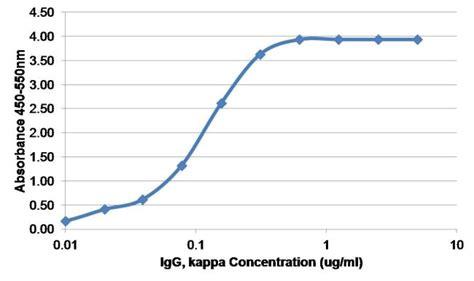 high kappa light chain mouse anti human kappa light chain biotin