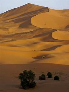 1000+ images about desert and sand dunes on Pinterest ...