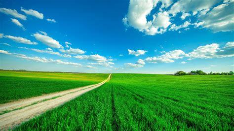 beautiful scenery green grass wide field road blue sky