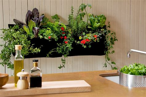 Gardening In Small Spaces Container Gardens & Raised Beds