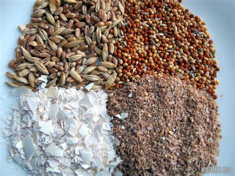 animal feeds bird feed supplier bulgaria   export