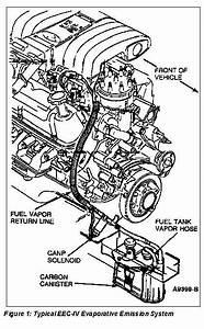 1988 Mustang Gt Smog Pump Delete  Vacuum Lines  And Belt