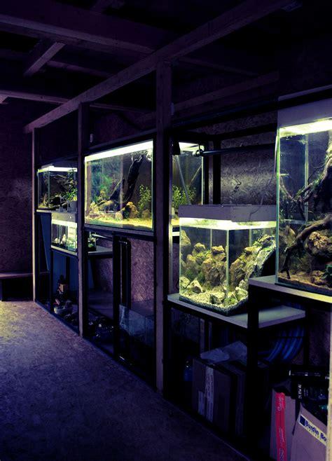 installation d aquarium mur v 233 g 233 tal et aquariums