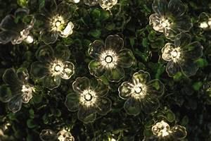 Guirlande Lumineuse Fleur : comment d corer le guirlande lumineuse ext rieur ~ Teatrodelosmanantiales.com Idées de Décoration