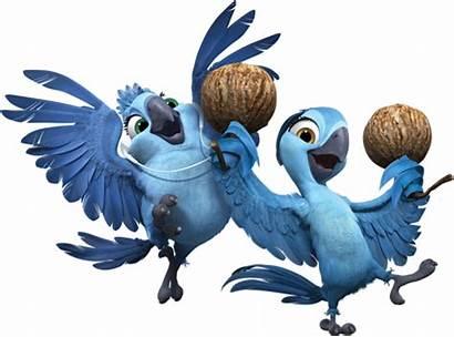 Rio Oiseau Blu Gambar Bleu Cartoon Francinecreation