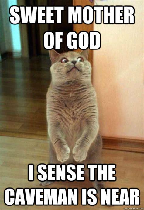 Sweet Mother Of God Meme - sweet mother of god cat meme cat planet cat planet