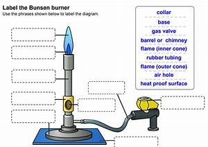 Mr Palmers Science Blog  Hurumanu