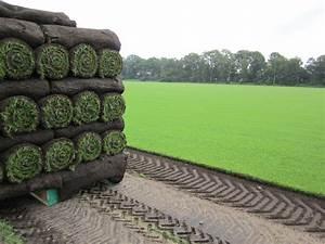 Prix Pelouse En Rouleau : votre jardin devient vert en quelques heures franken agro ~ Dailycaller-alerts.com Idées de Décoration