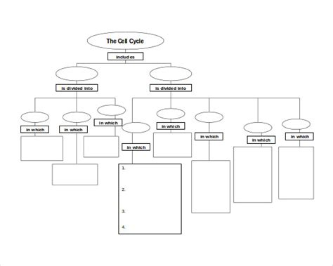 Free Nursing Concept Map Template by 10 Sle Concept Map Templates Sle Templates