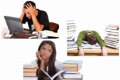 Stress College Students Management Managing Journal Writepass
