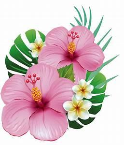 Pot De Fleur Transparent : hawa tropical et fleur ~ Teatrodelosmanantiales.com Idées de Décoration