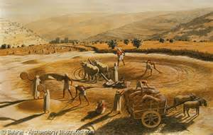 visualizing isaiah 28 the threshing sledge ferrell s