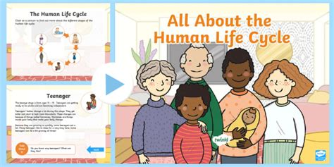 * New * Ks1 All About The Human Life Cycle Powerpoint Baby