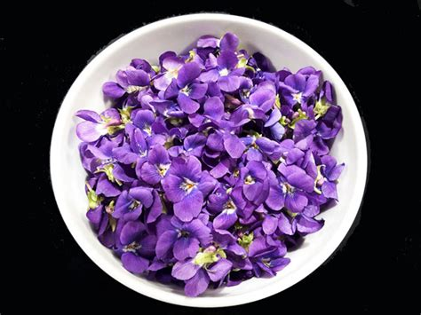 cuisine des fleurs la cuisine des fleurs au parfum de violette yesicannes com