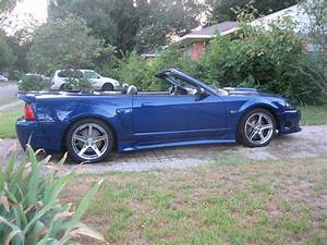 Whiteboy's Mustangs: 2003 Mustang GT convertible/Now saleen clone