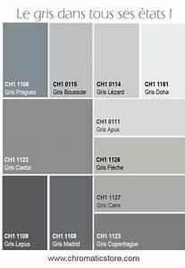 les 25 meilleures idees de la categorie salon gris sur With palettes de couleurs peinture murale 0 stilvoll palette de gris avec on decoration d interieur