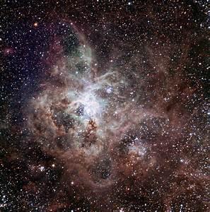 Tarantula Nebula  U2013 30 Doradus  U2013 Constellation Guide