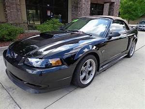 2002 Ford Mustang GT Deluxe 2dr Convertible In Norcross Alpharetta Atlanta Atlanta Auto Max