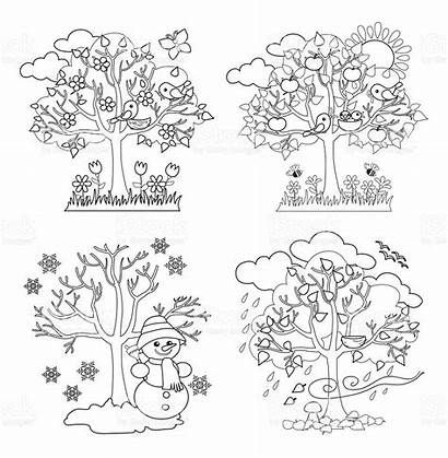 Seasons Four Coloring Clipart Trees Vector Spring