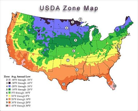 What Does My Usda Planting Zone Mean? — Urbanfig