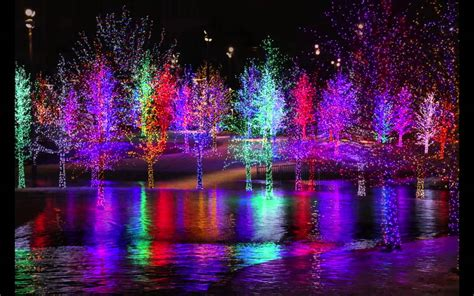 texas a m christmas lights five fun things to entertain teens good life family magazine