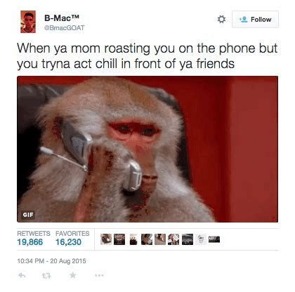 Baboon Meme - b calla s tweet getty images baboons know your meme