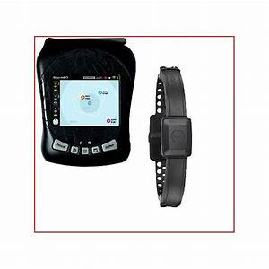 gps invisible fence dog collar recommendations and comparisons With gps dog fence