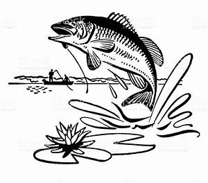 Bass Jumping Out of Water Clipart (56+)