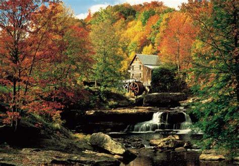 Eternal Autumn Of The Spotless Mind