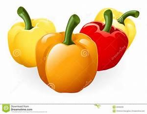 Sweet Bell Pepper Illustration Stock Photos