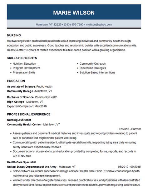 Sle Nursing Resume Templates by Nursing Resume Template