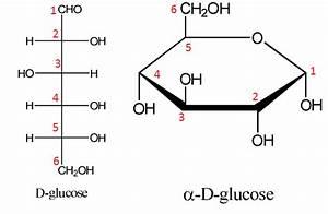 homework - Fischer to Haworth projection: which carbon ...