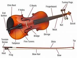 A Writer U0026 39 S Guide To Violinists