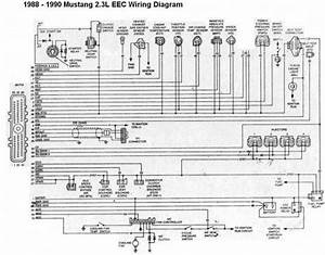 Eec Wiring Diagram Of 1988
