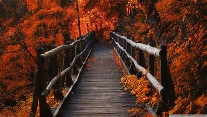 Hike Autumn