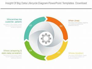 Insight Of Big Data Lifecycle Diagram Powerpoint Templates
