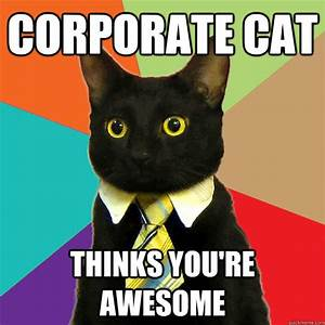 Corporate Cat Thinks You're Awesome - Business Cat - quickmeme