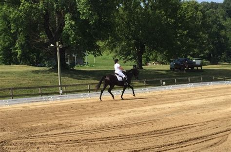 mattalyn hughes dressage horse boarding farm