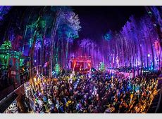 Electric Forest snags awards for production design, fan